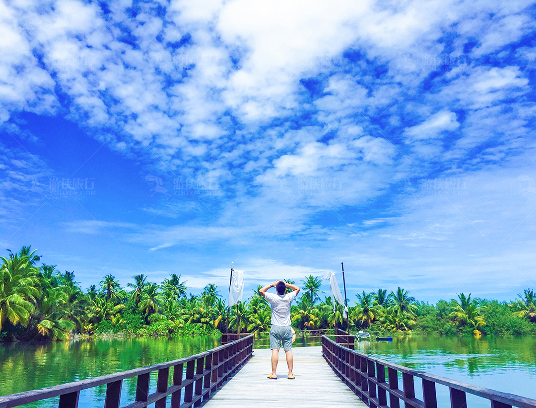 棕榈树蓝天