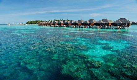 马尔代夫阿雅达Ayada Maldives6天4晚自由行(性价较高、中文服务、赠送蜜月服务、)