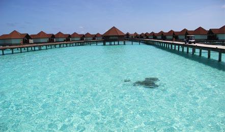 马尔代夫鲁宾逊岛Robinson Club Maldives6天4晚自由行(一价全包、性价比高、岛上浮潜工具可以免费租借、酒店里有中国厨师、比较符合中国人的胃口)